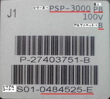 P1000384_2